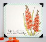 Kim Hughes - Year Of Flowers: Gladiolus
