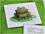 Debbie Olson - Boy Basics: Frog Hop