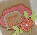 Special Person detail