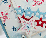 Bright Star Detail 2
