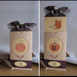 bog-hop-card-june-08