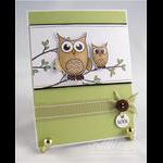 Debbie Olson - Wise Owl