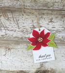 Laurie Willison - Painted Poinsettias