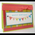 Taylor VanBruggen - Birthday Basics