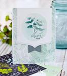 Herb-Mint1